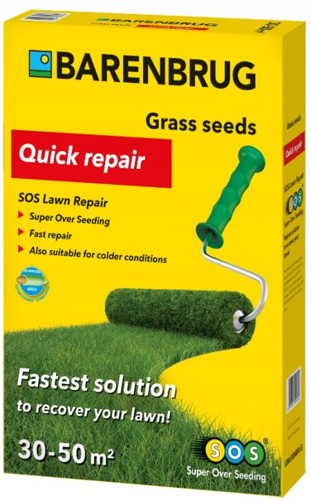 Trawa BARENBRUG podsiew i regeneracja trawnika 1 kg