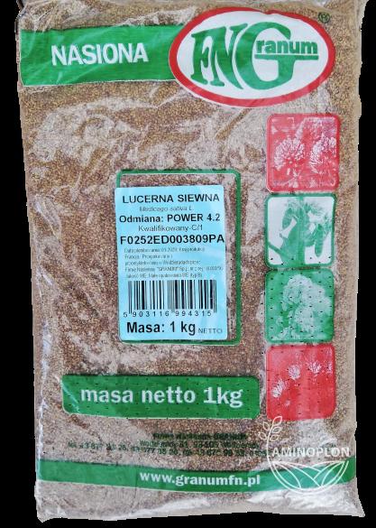 Lucerna siewna Power 4.2 1kg – na paszę wysoko białkową, kiszonkę, zielonkę
