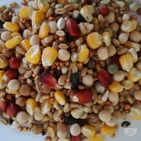Mieszanka zbóż dla Gołębi Zimowa Z 25kg – materiał paszowy